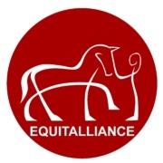 Equitalliance Comportementaliste Équin École Formation